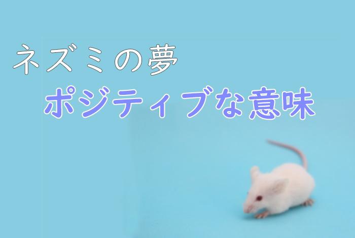 【夢占い】ネズミの夢のポジティブな意味