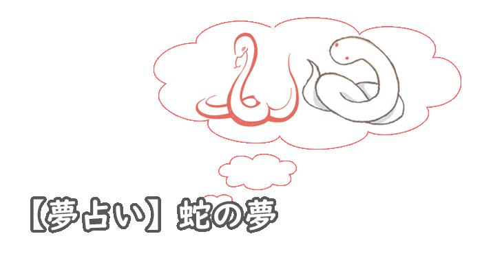 蛇の夢のランク順と夢分析の方法も