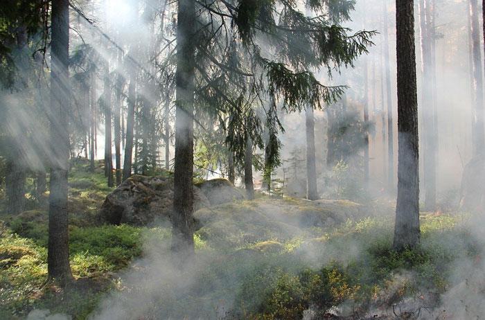 煙だけ出ている夢やボヤ・火事になりそうな夢