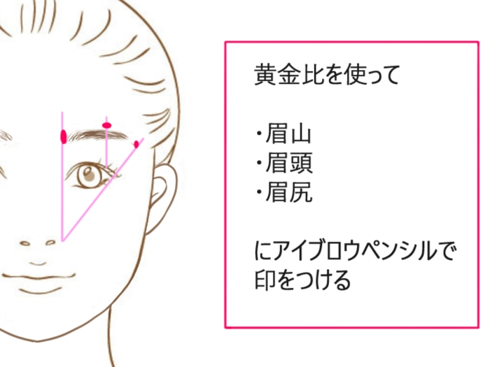 眉毛のベースラインの印